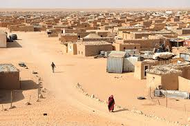 """صورة نزاع الصحراء.. روسيا تدعم جهود """"كوهلر"""" و تدعو لإشراك موريتانيا و الجزائر كمارقبين"""