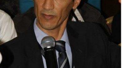 صورة الهيمنة على العرب، أماني وأوهام أردوغانية/ د. محمد عمر غرس الله