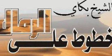 صورة الدور الموريتاني المتنامي../ الشيخ بكاي