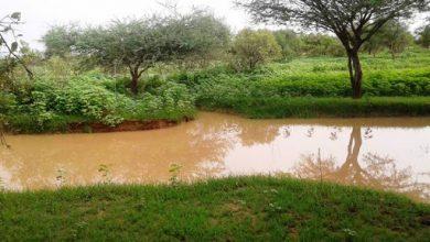 صورة بشرى سارة…تهاطلات مطرية جديدة على مناطق واسعة من البلاد(مقاييس)