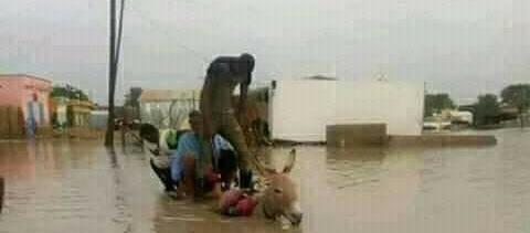 صورة السيول تداهم قرى بالكامل في الحوض الشرقي ..والسكان يستغيثون(صور)