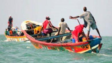 صورة موريتانيا: استئناف أنشطة الصيد التقليدي بعد توقف دام نحو الشهر